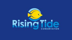 Rising Tide Conservation is on Facebook