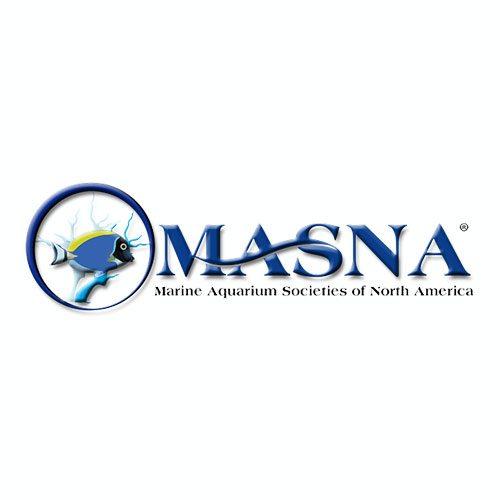sponsor_masna